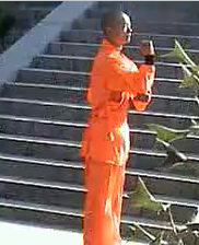 Shaolin Pao Quan